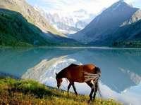 Paisajes - Una hermosa vista sería más