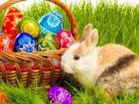 Pasen mand en eieren