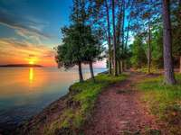 Lesní cesta u jezera - Lesní cesta u jezera