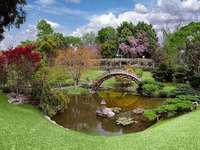 Botanical garden with a pond