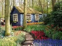 Вила в гората с градина - Снимка на красива синя къща сред дърветата. Къщата има