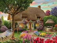 Stuga, trädgård, hängmatta, katt