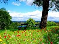 skvělé místo k odpočinku - skvělé místo k odpočinku