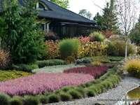 Градината във Витовице