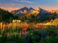 naplemente a hegyekben