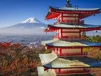 JAPONIA JAPONIA