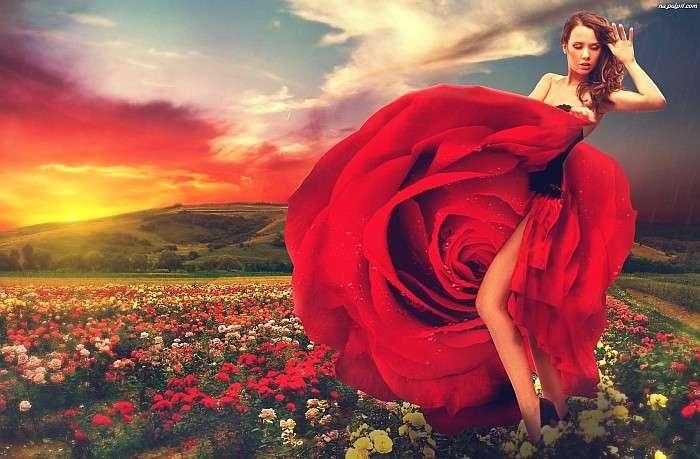 Ein Frauentanzen - Dame in Rot - Chris de Burgh (10×10)