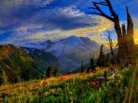 Връх изгрев на Рейниер - Вулканичен връх Райние в САЩ