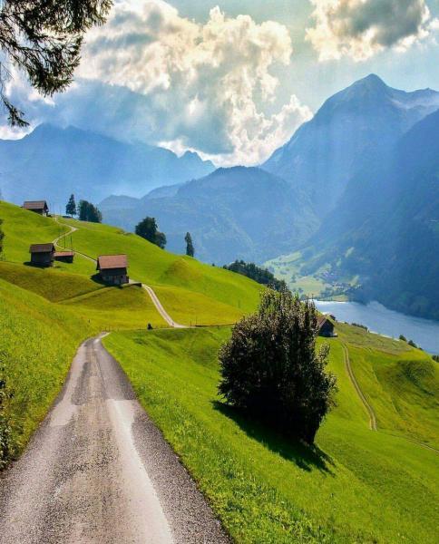 Schweiz - Die Schweiz ist ein wunderschöner Ort. Ein herrliches Land und eine vorherrschende Kultur. Bild zeigt die Aussicht von diesem Land. Grün, Bäume, Berge und all das sind Naturwunder (10×10)