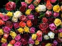 Rose per gli amanti del puzzle