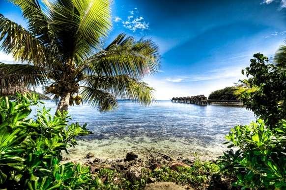 île tropicale - Les puzzles montrent une belle île tropicale