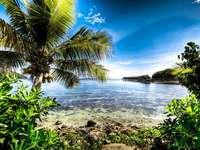 тропически остров - Пъзелите показват красив тропически остров
