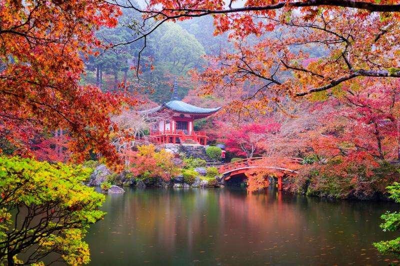 храм Бетен - Храмът Дайгоджи, Киото беше център на еволюцията на архитектурата, както религиозна, така и светска, както и г (10×10)