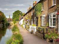 Houses by the river - buildings on the river, vegetation