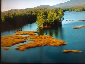 Small islet - Island on the lake. Surrounded by trees, everywhere a forest. Nice, blue water color. Beautiful view