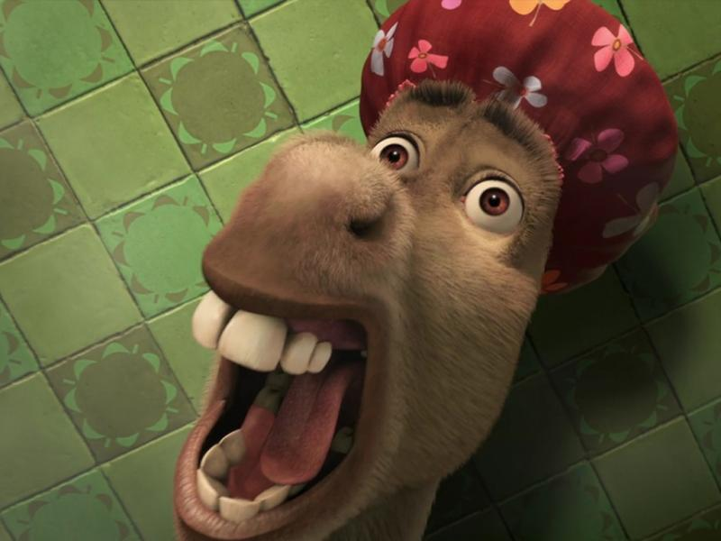 Burro de Shrek - Burro de la pelicula Shrek