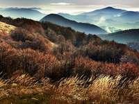 Montagne automne