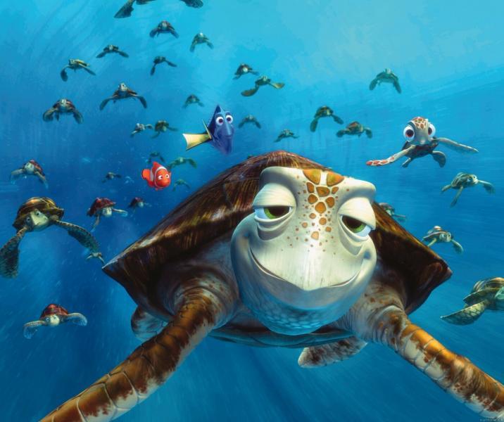 """Crash - Găsirea lui Nemo - Premiat Oscar pentru cea mai bună producție de lungmetraj animat """"Finding Nemo"""". Marea barieră de recif. Micuțul Nemo merge pe neașteptate din ocean direct în acvariul din cabinetul stomatol (4×4)"""