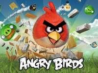 Dühös madarak