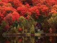 zlatý podzim - zlatý podzim v horách, chata u jezera