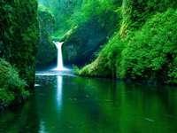 Зелен рай