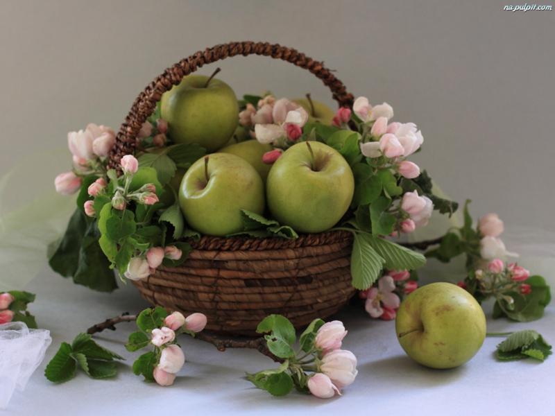 frukt forts