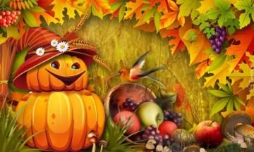 Autumn harvest - fruits, leaves, bud in a hat