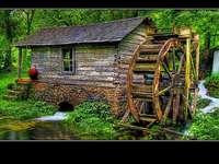 Vattenbruk i vackra omgivningar - vattenkvarn i skogen i en vacker naturlig miljö
