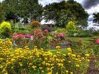 ωραίο πολύχρωμο κήπο - ωραίο πολύχρωμο κήπο