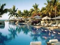 semester i tropikerna - härlig semester i tropikerna