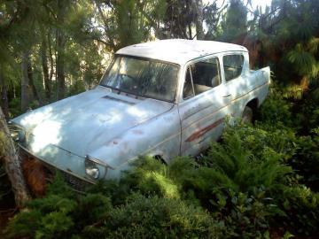 harry potter - Une voiture sur les terres d'un arbre