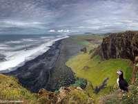 Izlandi táj és a puffi