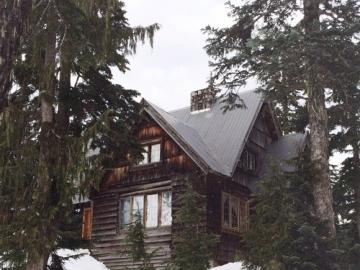 Winter landscape - A house standing among trees