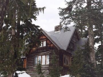 Paesaggio invernale - Una casa in piedi tra gli alberi