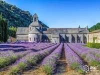 abadía en provence