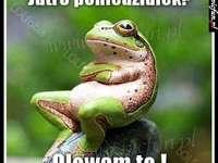 Tato žába je divná - žáby jsou velmi podivné (pokládání s přítelem xddd)