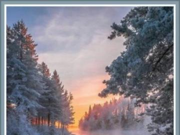 Téli táj - Gyönyörű kilátás a havas fák
