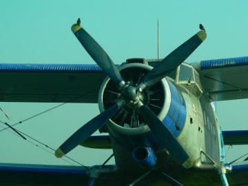 samolot Antek - stary poczciwy Antek