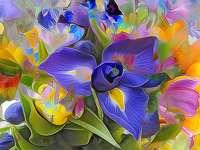 Blauwe bloemafbeeldingen