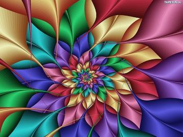 Colorful flower graphics - colorful flower graphics