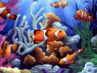 aquário