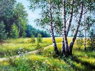 letni krajobraz - brzozy na łące , spokojne miejsce na odpoczynek