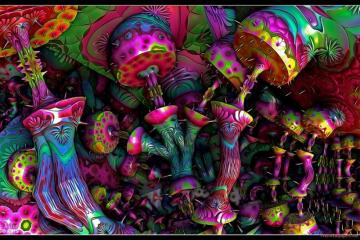 Psychedelic puzzle - Psychedelic puzzle