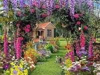Garden, flowers, cat, house