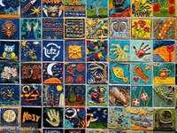 Une collection d'images coloré