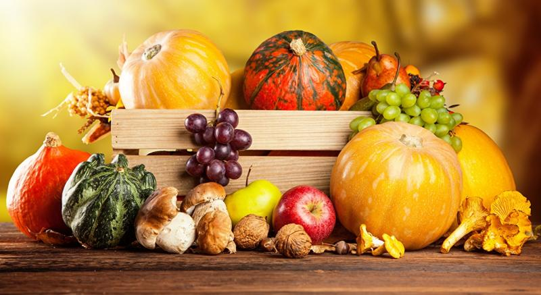 compoziție - compoziție de fructe colorate (10×10)