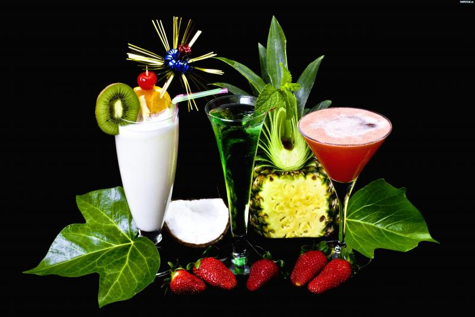 alkochole