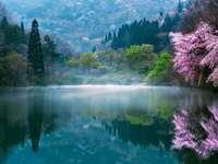Krajobraz - Mgła nad jeziorem