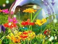 Kwiaty, kwiatki i szklana kula