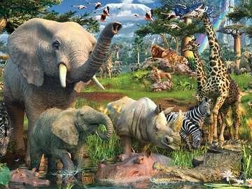 African animals - African animals